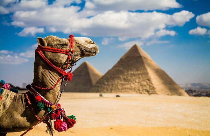 египет_1_725х470