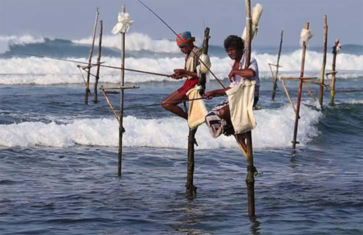 Шри Ланка_Коггала_4
