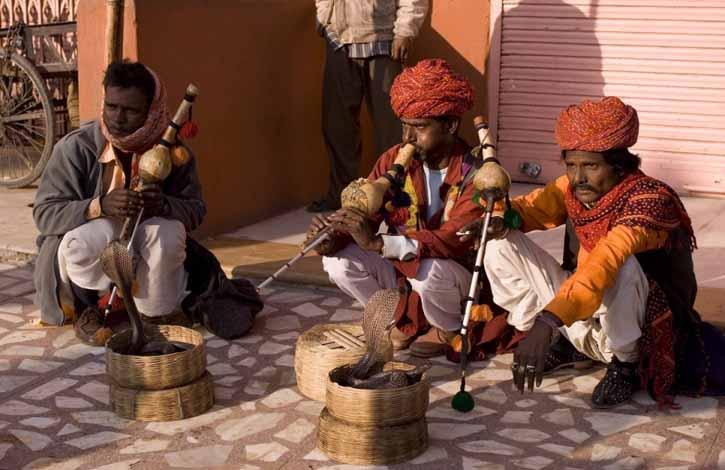 Индия, Джайпур 5