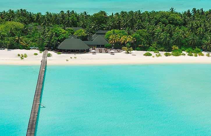 Мальдивы, Ари & Расду Атоллы 4