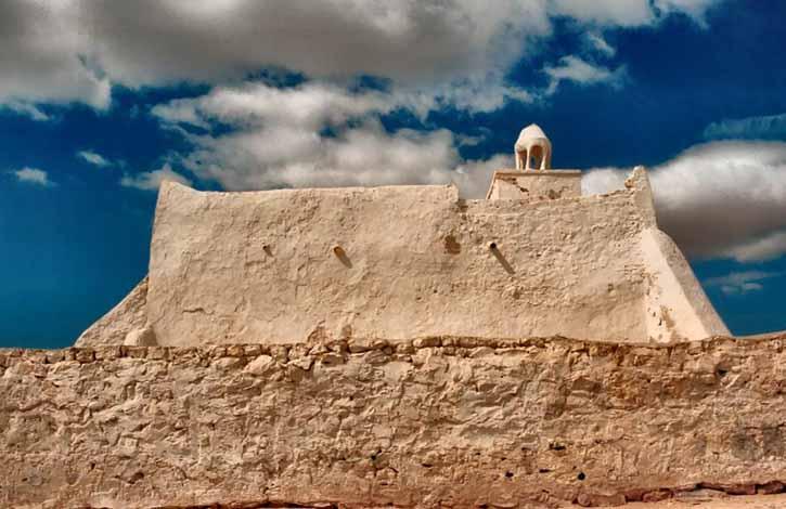 Тунис, Бизерта 4