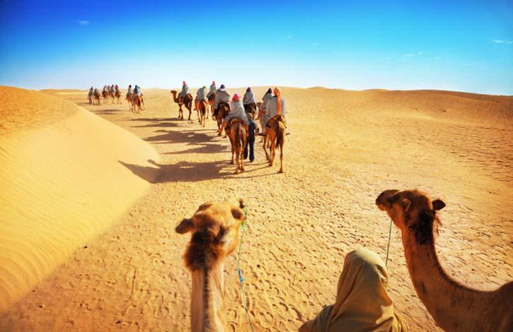 Туры в Тунис из Запорожья