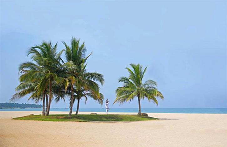 Шри Ланка, Пасикуда_1
