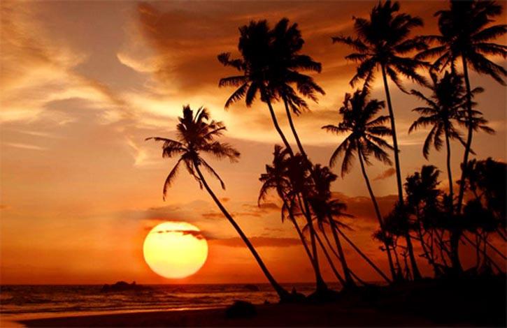 Шри Ланка_негомбо_1